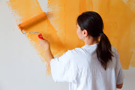 paint the property in UK